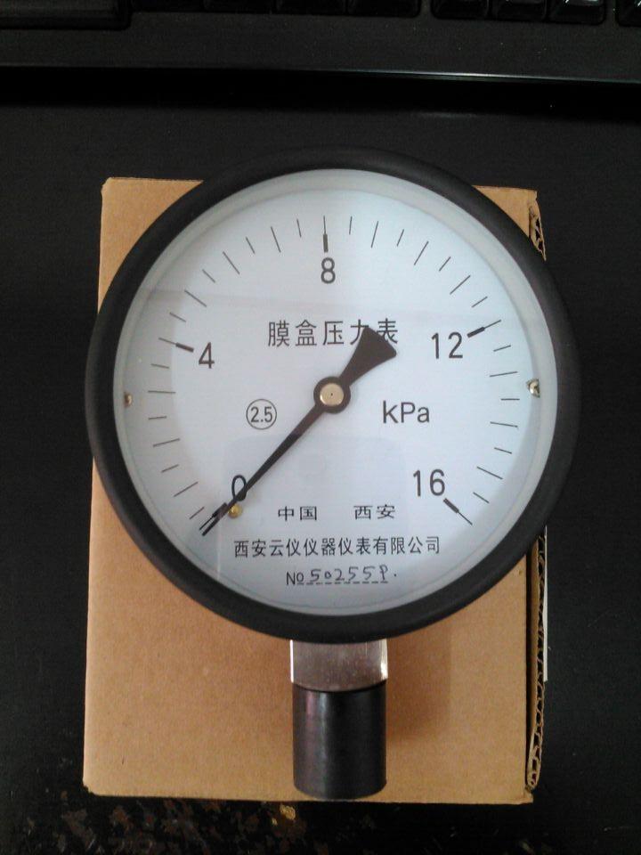 膜盒压力表YE100